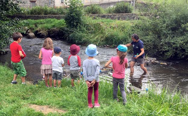 Education à l'environnement